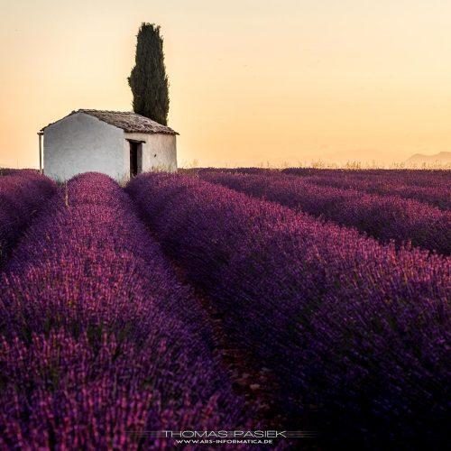 Provence-Alpes-Côte d'Azur, France in 2016